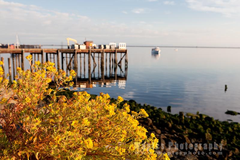 Port Angeles/Strait of Juan de Fuca