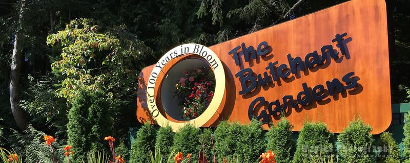Butchart Gardens!