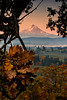 Mt. Hood, Hood River Valley, Oregon