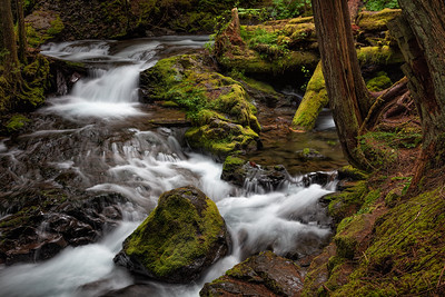 Panther Creek, Oregon