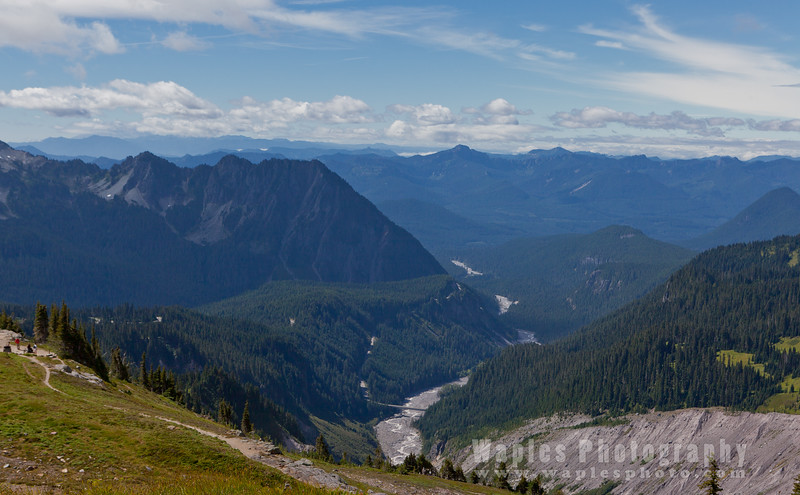 Nisqually River Valley