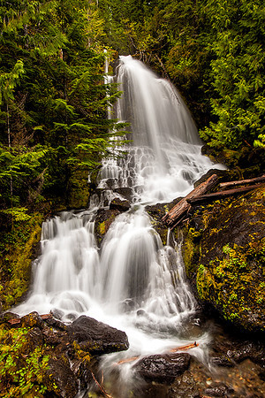 "Waterfall, Mt. Rainier National Park, Washington. I saw this fall along the roadside as I drove by and stopped to photograph it. I didn't write down the name of the fall, and while trying to research it online, have seen it labeled as ""Cougar Falls"", ""Nahunta Falls"", ""Fall Creek Falls"", and even ""Sol Duc Falls"", which I know for sure is wrong because I've been to Sol Duc and it's in Olympic National Park."