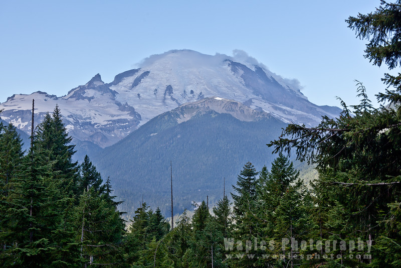North Face of Rainier