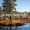 Deschutes River in Autumn