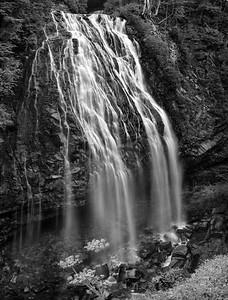 Narada Falls, Washington