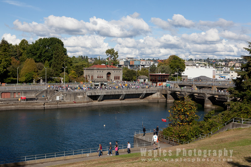 Chrittenden Locks