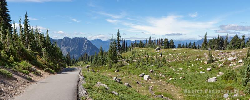 Beautiful Trail Skyline Trail