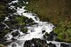 Near xxx Falls. Columbia River Gorge National Scenic Area.  Corbett, OR.