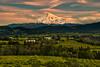 Mt. Hood, Hood River Valley, Oregon