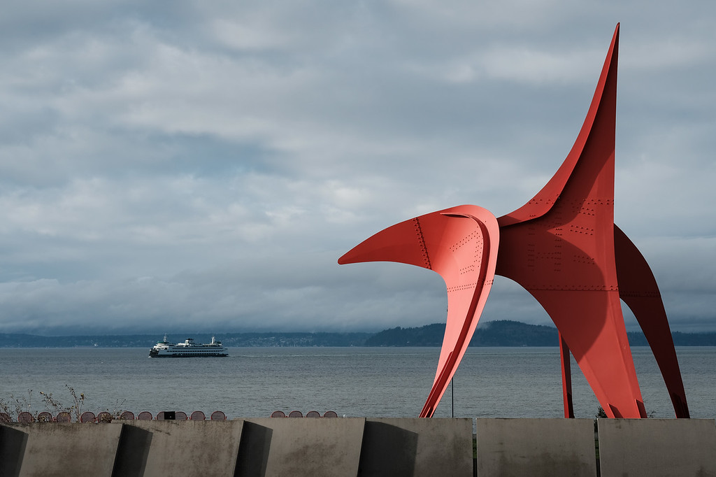 Eagle at Olympic Sculpture Park | Seattle, WA | November 2017