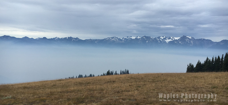 At Hurricane Ridge (Wildfire Smoke in the Valley)