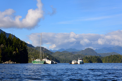 Fishing Vessels of Vancouver Island