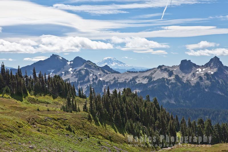 Mount Adams Looms Behind the Tatoosh