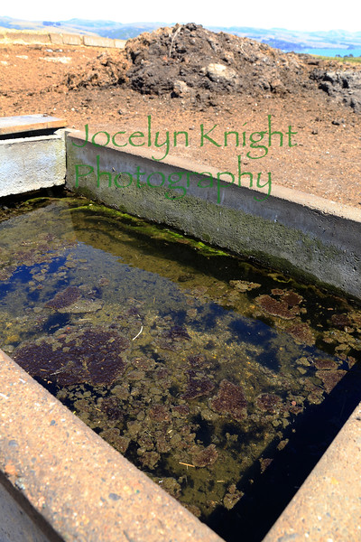 WaterTrough1744