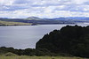View  of Elephant Mountain from the trail leading to Lairds Landing on Tomales Bay, PRNS