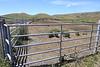 Kehoe Ranch