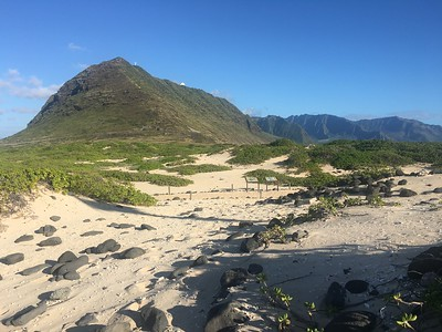 Looking back from Ka'ena Point