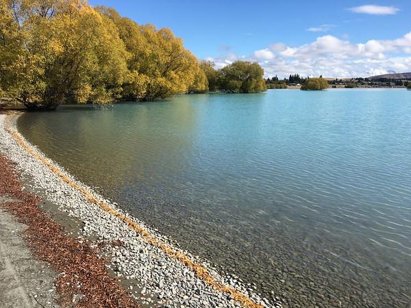 Lake Tekapo shoreline: leaves and rock flour