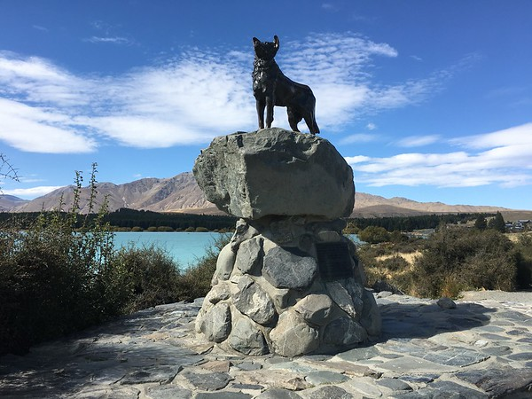 Monument to the collie dog