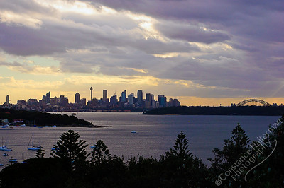 Sydney - Sydney Harbor and skyline
