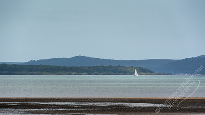 Moreton Bay - sailboat
