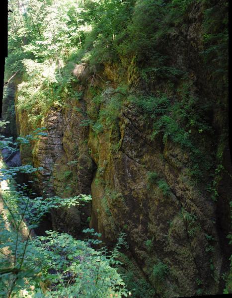 Oneonta Upper Gorge