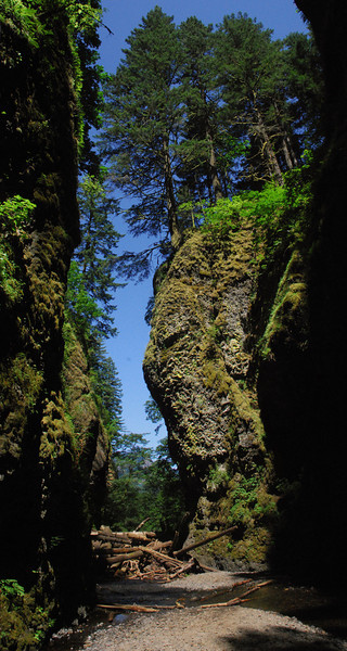 Oneonta Lowest Gorge