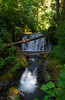 Thumb Falls -Multnomah Creek