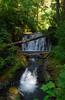 Thumb Falls -Multnomah Creek