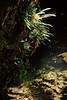 Bridal Veil Falls Pool