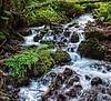 Wakeenah Creek Cascades