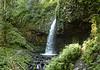 Latrelle Upper Falls - Panorama
