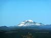 Mt  Ranier from Larch Mtn