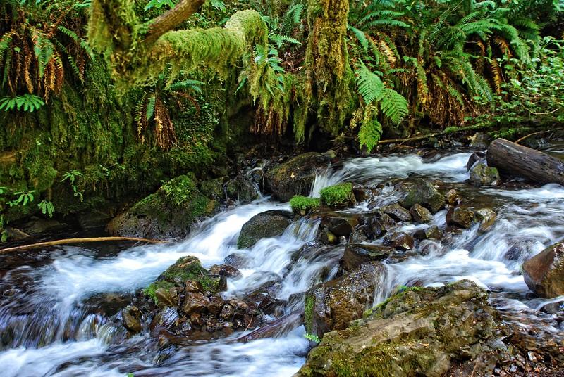 Wakeena Creek