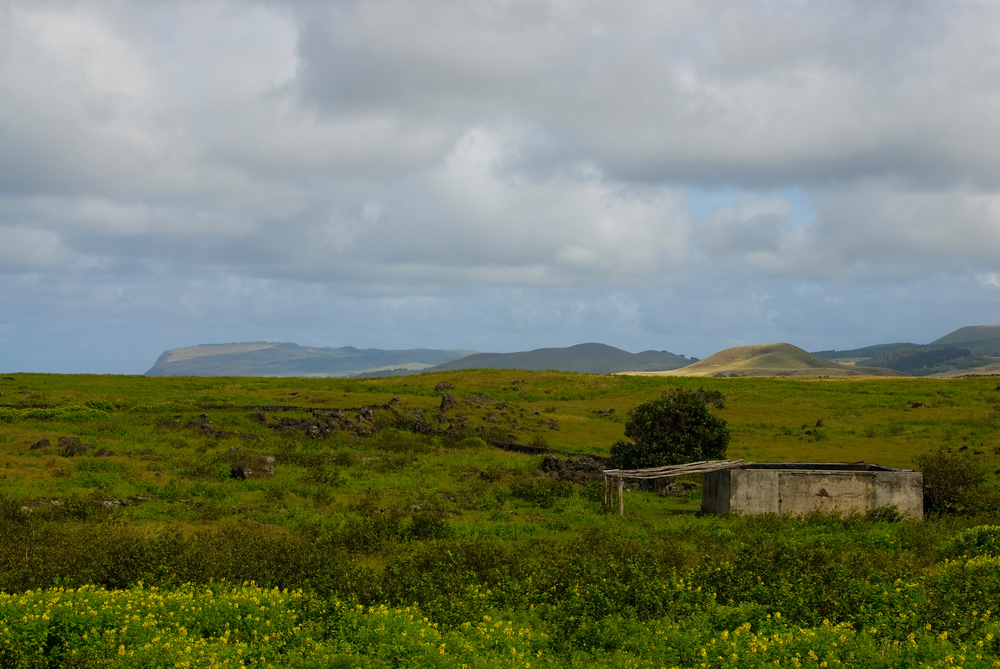 Shed and Field. Easter Island.
