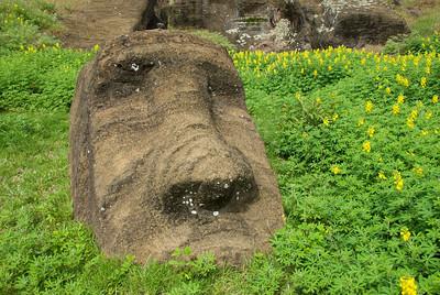 Close-up of Maoi in Rapa Nui - Easter Island