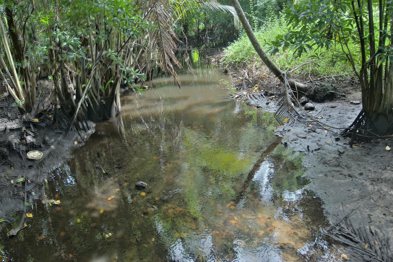 Stream Kosrae Village Resort