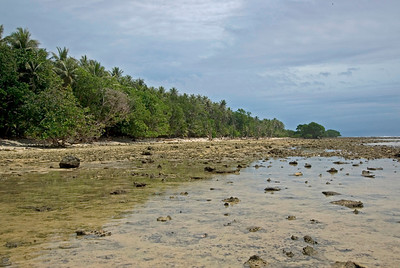 Shoreline Low Tide - Kosrae, FSM
