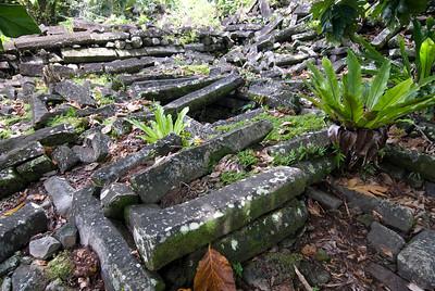 Nan Modal Tomb Ruins