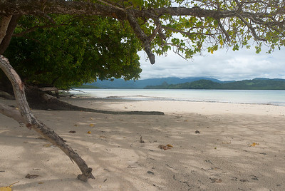 White sand beach in Pohnpei, Micronesia