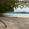 An empty beach on Pohnpei in                                       the Federated States of                                       Micronesia