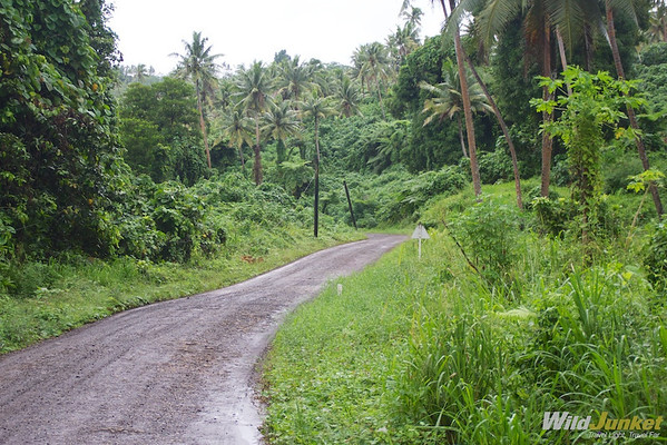 Driving on the roads of Taveuni