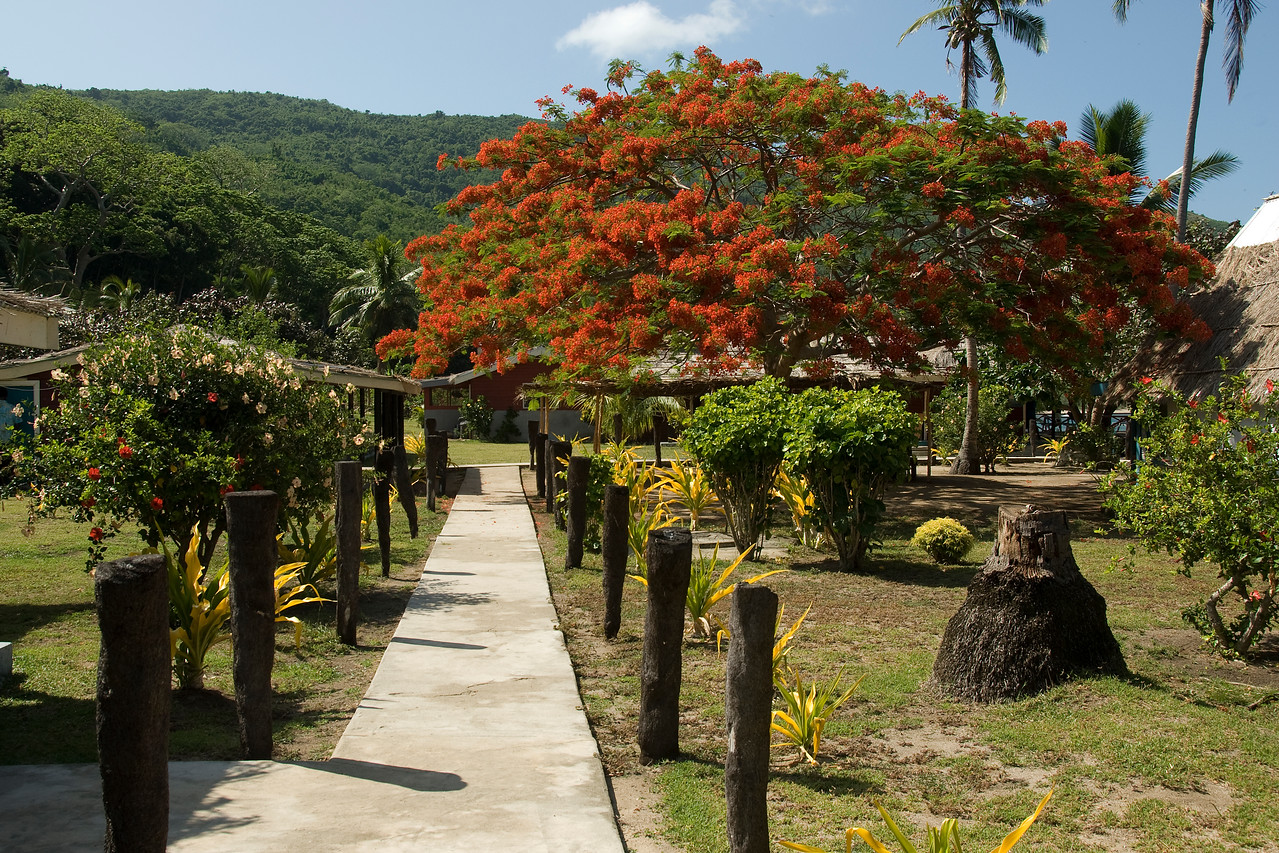 Resort pathwalk in Yasawa Islands, Fiji