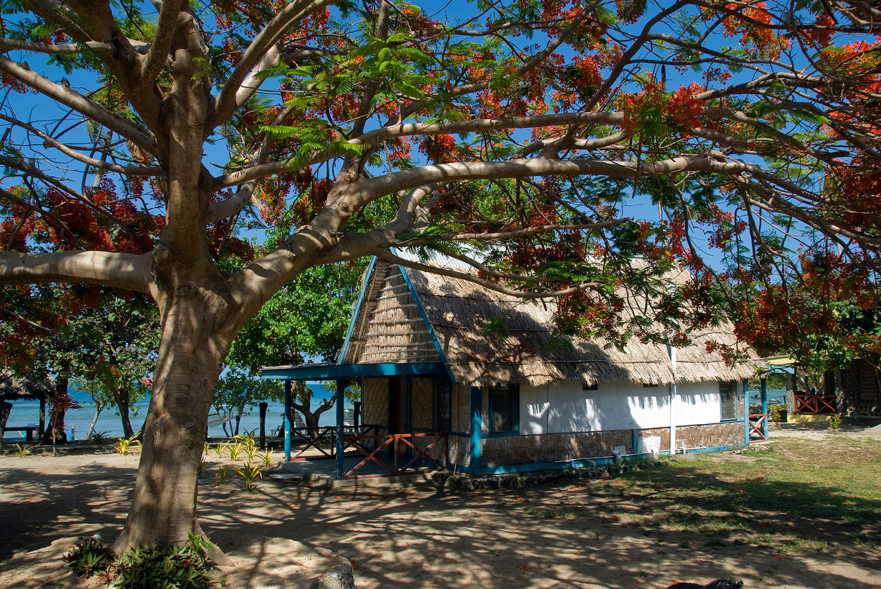 Tropical huts in Yasawa Islands, Fiji
