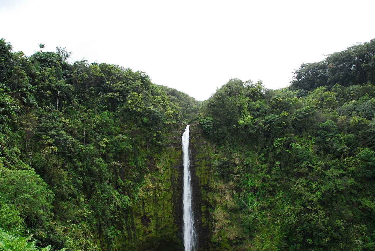 Akaka Falls in Hawaii
