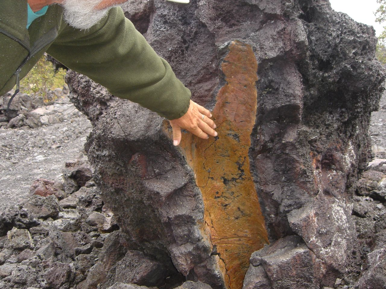 Lava Tree Mold