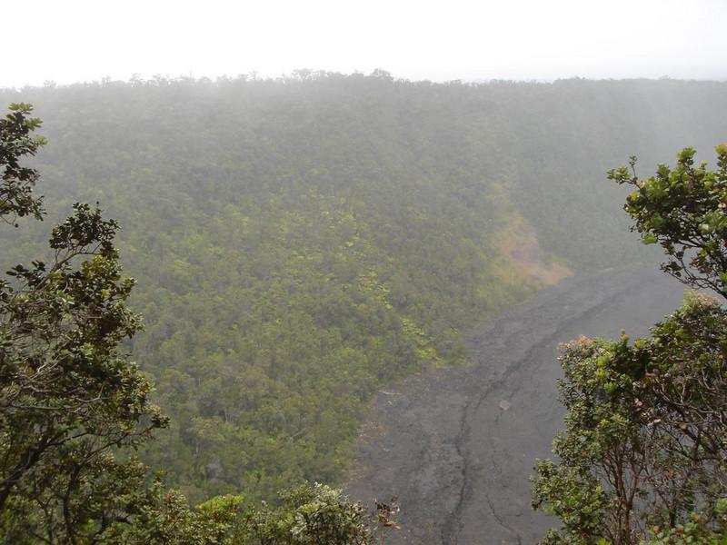 Overlooking rainforest in Hawaii