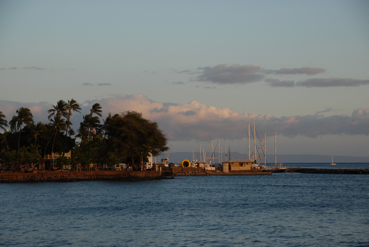 Busy port during sunset in Lahaina, Hawaii