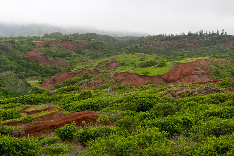 Lush mountains in Lanai, Hawaii
