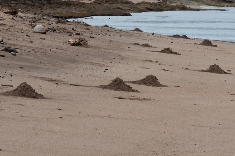 Shipwreck beach in Lanai, Hawaii